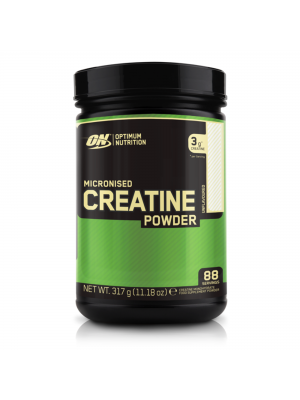 Optimum Nutrition Micronized Creatine 300g (*Please note this product is not eligible for same day delivery.)